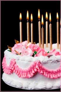 Cake (XXL)